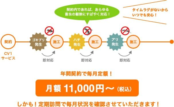 害虫駆除が年間契約で毎月定額