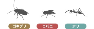 ゴキブリ コバエ アリ